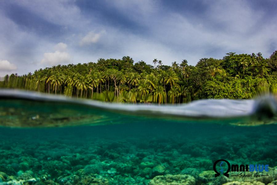 Sur un site de snorkeling préservé...