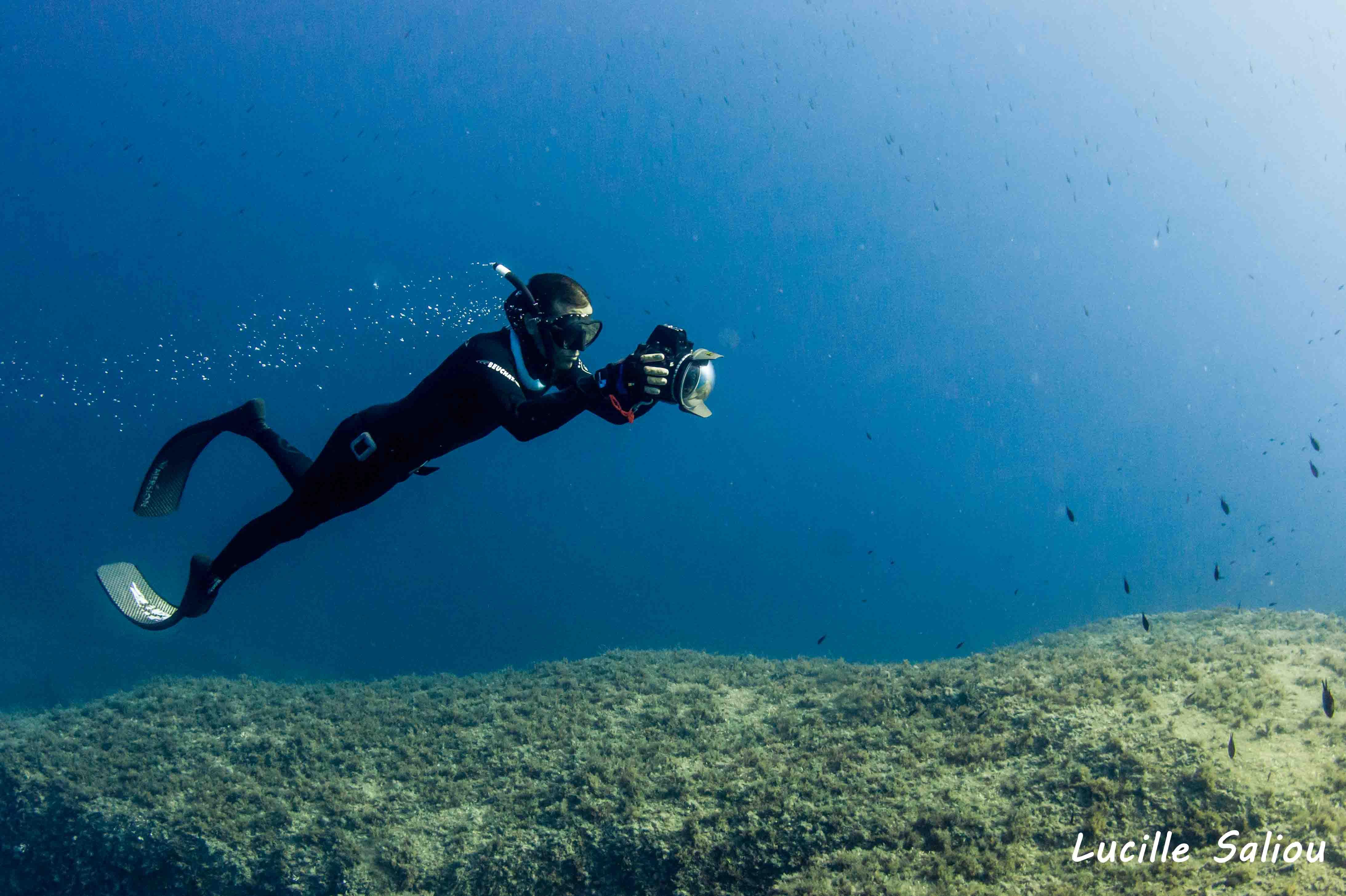 photo sous-marine en apnee
