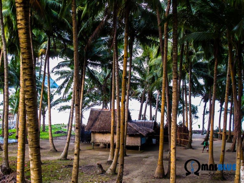 Dumagat_Omniblue_Village