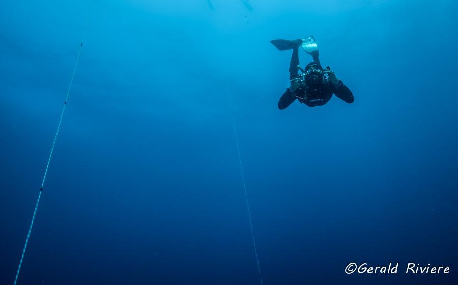 Prise de vue sous-marine