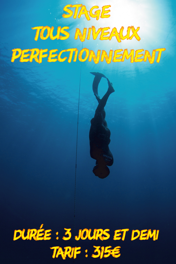 stage_perfectionnement